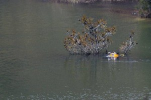 A diver's helmet is seen as he searches in a lake for female bodies near the village of Xiliatos outside of capital Nicosia, Cyprus, Friday, April 26, 2019. Cyprus police are intensifying a search for the remains of more victims at locations where an army officer _ who authorities say admitted to killing five women and two girls _ had dumped their bodies. (AP Photo/Petros Karadjias)