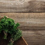 stock-photo-top-view-green-rosemary-parsley